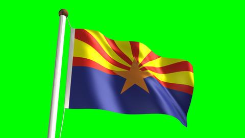 Arizona flag Stock Video Footage