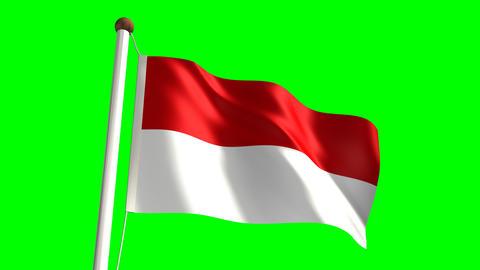 Indonesia flag Stock Video Footage