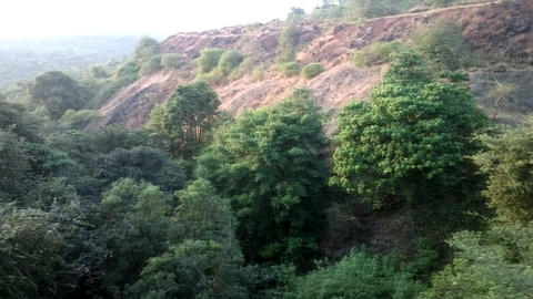 Deccan plateau 1, India, in winter. Eternal greenery Live Action