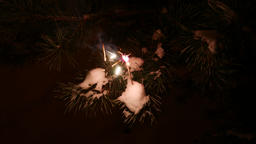 Sparkler stick burn in night, bright flash and flakes illuminate pine needles Footage