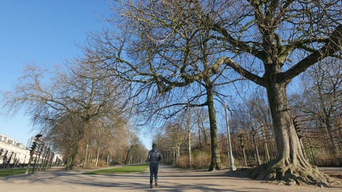 Walking Along the Park in Winter Footage