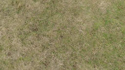 Landing On A Grass Field Footage