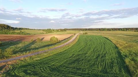 Flying Drone In A Meadow 1 ビデオ