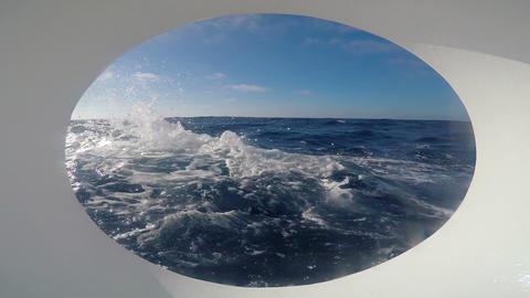 Diving Safari trip across the Pacific ocean. California Footage