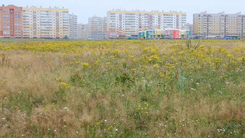 first houses of a large city among meadows and nature Footage