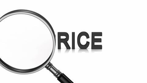 Analysis of Price Animation