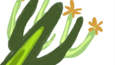 We draw a cactus. Digital drawing Animation
