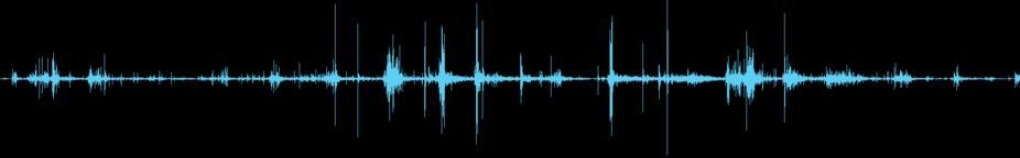 Footsteps on Wet Crunchy Debris loop Sound Effects