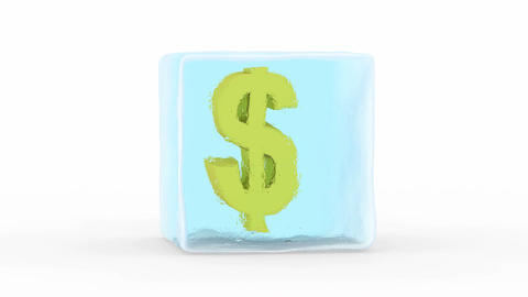 Dollar Frozen in a Block of Ice Animation