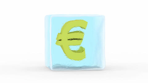 Euro Frozen in a Block of Ice Animation