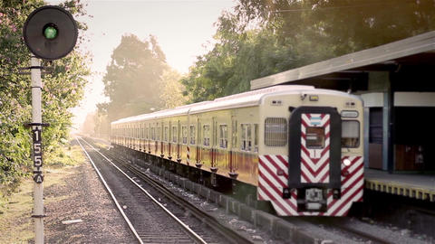 Argentine Trains In Old Station of Buenos Aires Footage