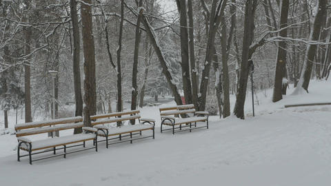 Snowing Benches in Park Footage