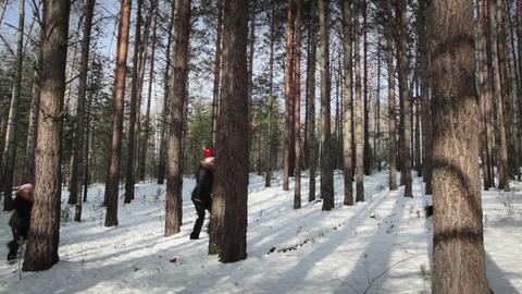 Women in cap Santa Claus walking in the woods Stock Video Footage