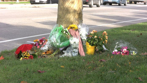 Accident Memorial With Traffic Passing By Stock Video Footage