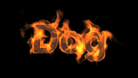 flame dog word,fire text Animation