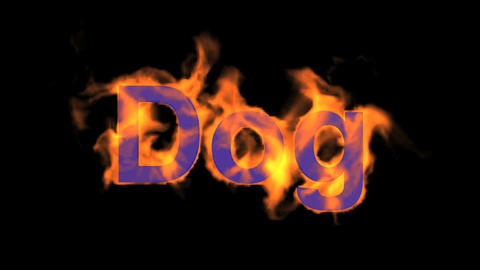 flame dog word,fire text Stock Video Footage