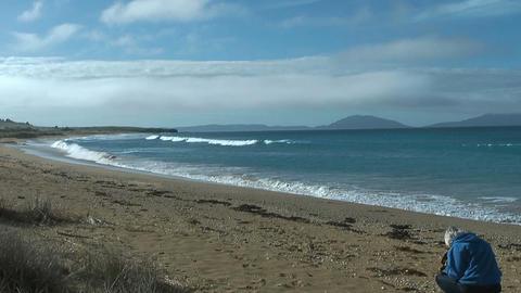 Tourist collecting shells at tasmanian beach Stock Video Footage