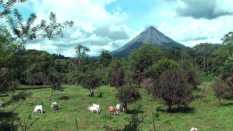 volcano arenal in costa rica Live Action