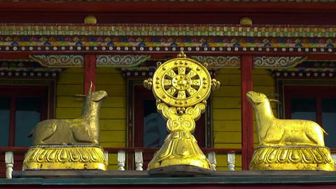 Buddhist Symbol Dharmacakra,wheel of life Stock Video Footage