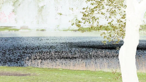 Waves on pond with inversion filter Footage