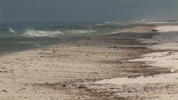 Oil Spill on beach Footage