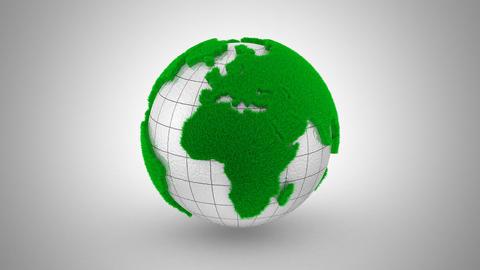 Global Ecology Animation Animation
