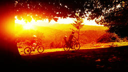 Father and sons on bicycles, mountain trail at sunset Footage