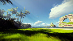 Tropical beach with rocks in ocean and aircraft landing Animation