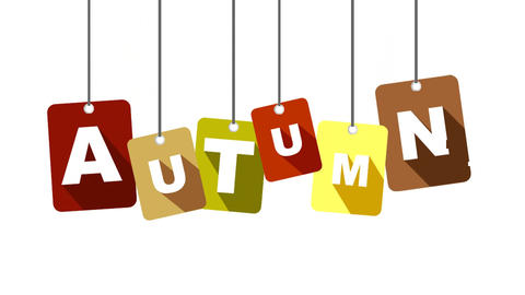 autumn video with flat tag Animation