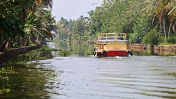 Tourist Boat Moves away along River with Palm Banks in Tropics Footage