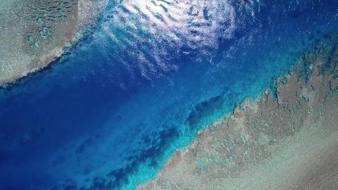 aerial view of coral reef Footage