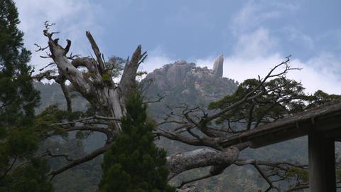 Peak of Mt. Tachu Footage