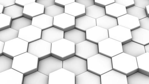 Hexagons Form a Map of the World Animation