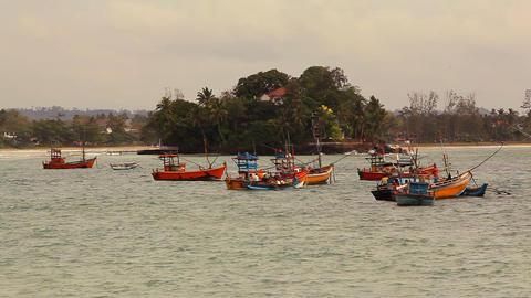 Boats Sri Lanka Footage