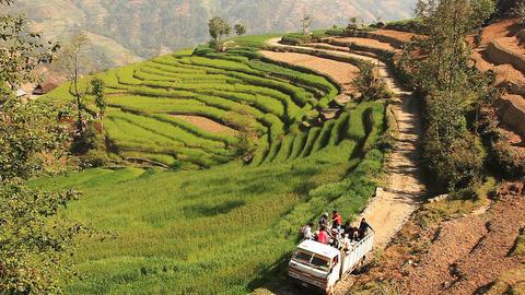 Car Rice People Footage