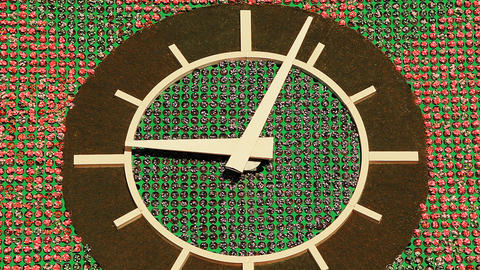 Flower Clock CG動画素材