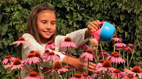 Girl Flowers Footage