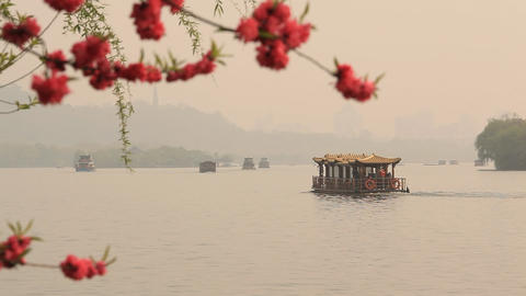 The ships float on the lake In the foreground blossoming cherry Footage