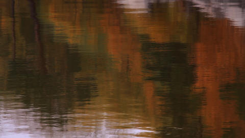 The small particle moves on water with reflection of an autumn palette Footage