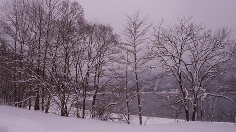 長野県 青木湖 Footage
