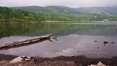 長野県 女神湖 Footage