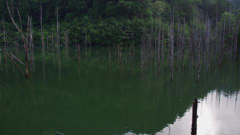 自然湖(長野県木曽郡王滝村) Footage