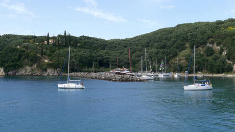 Sailboats coming out of a small harbor surrounded by forests of olive and headed Footage