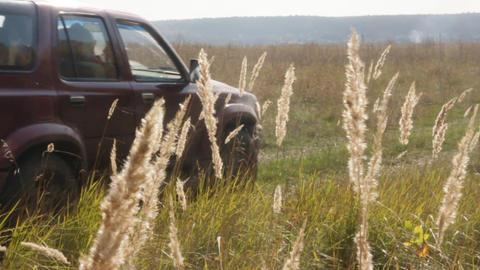 Jeep in field Footage