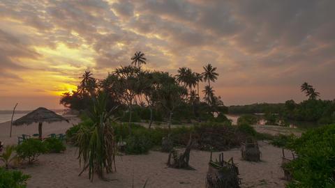 Marakolliya beach Footage