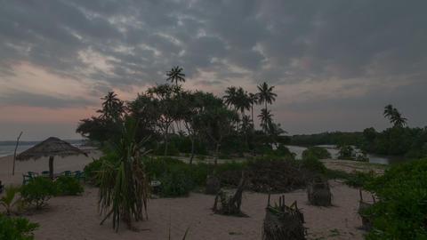 Marakolliya beach Stock Video Footage
