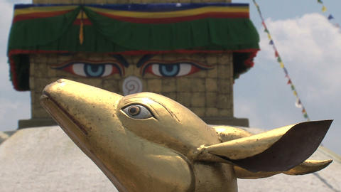 Golden brahma symbol in front to focus of the Boud Stock Video Footage
