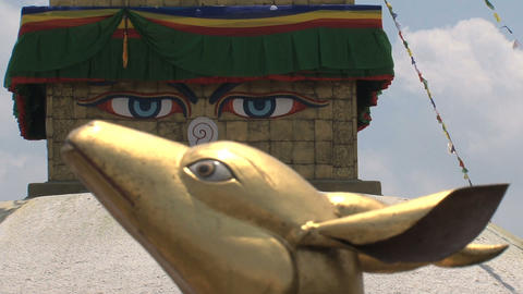 Golden Brahma Symbol In Front To Focus Of The Boud stock footage