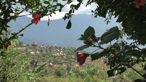 Nuwakot landscape view from through a roses plant Footage