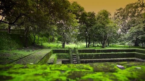 Polonnaruwa ancient city Stock Video Footage